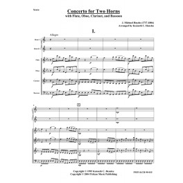 Concerto for 2 Horns